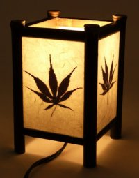 Mini Sigma Table Lamp - newlibrarygood.com