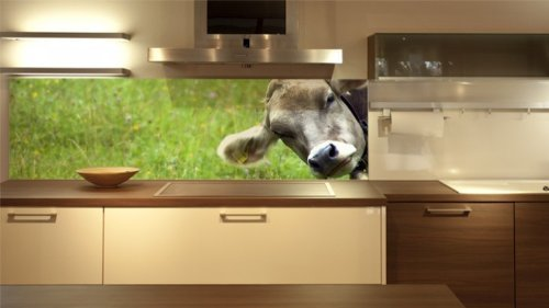 Ikea Küche Wandpaneele Glas