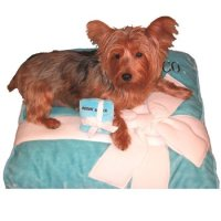Dog Beds - Sniffany & Co.Dog Bed by Haute Diggity Dog ...