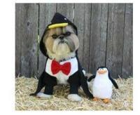 Dog Costume - Hoodie Penguin Pet Halloween Costume - XXX ...
