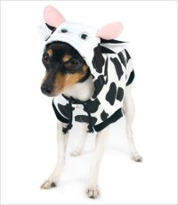 Cow Halloween Costumes In All Sizes - Best Costumes for ...