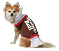 Small Dog Halloween Costumes For Dachshunds And Other ...