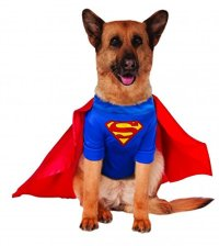 Big Dogs Superman Dog Costume, XXX-Large Apparel ...
