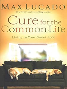 "Cover of ""Cure for the Common Life: Livin..."