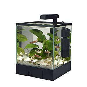 Aquarium for sale amazon pet supplies fluval accent for Amazon fish tanks for sale