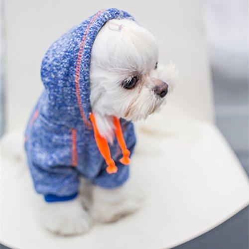 HOT Eagle Sweatshirts One Piece Clothes  Pets Bond
