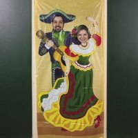 Amazon.com: FIESTA Photo Op DOOR BANNER/MEXICAN PARTY ...