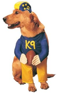 Find The Best Dog Football Costume For Your Fur Baby