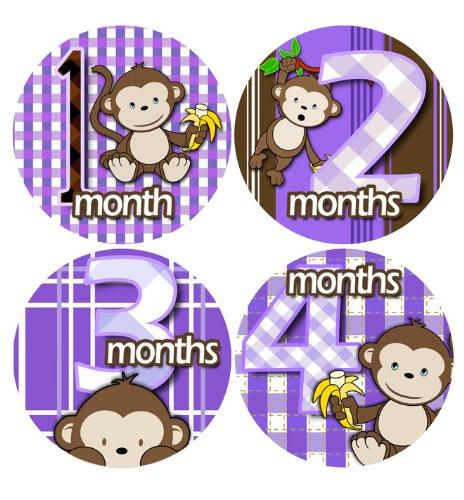 MILESTONES BABY STICKERS, Timeline of Child Milestones, Development - baby milestone timeline
