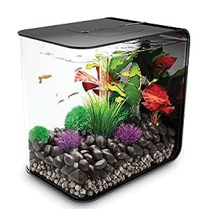 fish aquatic pets aquariums accessories aquariums