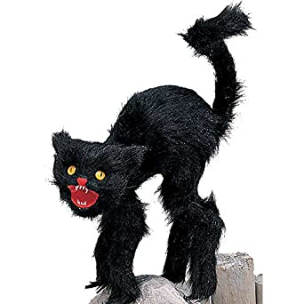 Amazoncom Scaredy Black Cat Prop With Fangs Clothing