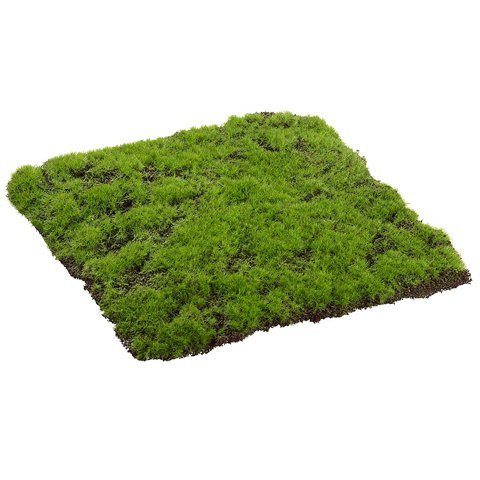 Wx12 Moss Artificial Topiary case Promo Code