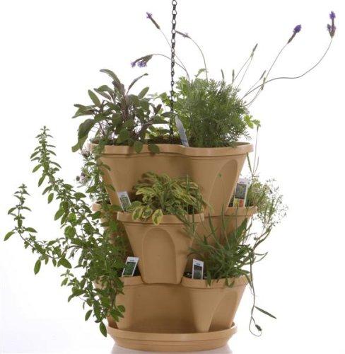 Permalink to Indoor Herb Garden Kit