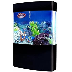 Amazon.com : 75 Gallon Acrylic Fish Tank Aquarium (Complete System