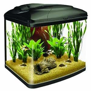 Interpet Original Fish Pod Glass Aquarium Fish Tank   48 Litre: Amazon