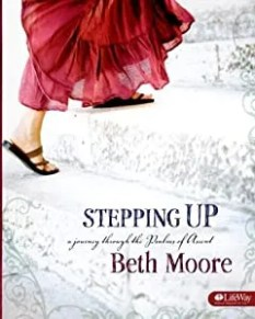 """Cover of """"Stepping Up: A Journey Through ..."""