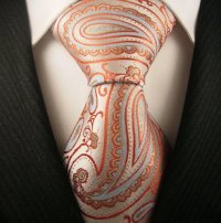 Neckties: Neckties by Scott Allan, 100% Woven Mens Tie ...