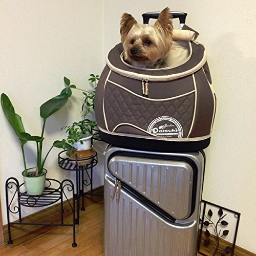 通院や非常用に!猫用リュック型3Wayキャリーバッグ 耐荷重6kg迄 (ブラウン)