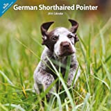 German Shorthaired Pointer 2014 Wall Calendar