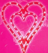 Outdoor Valentine Lights and Decorations Including Inflatables