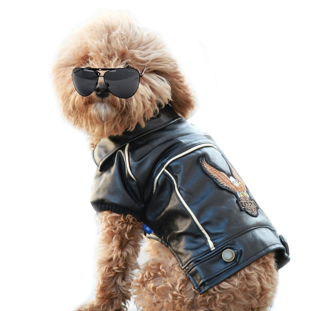 Nacoco tm pu leather motorcycle jacket dog pet clothes leather jacket watherproof amazon in home kitchen