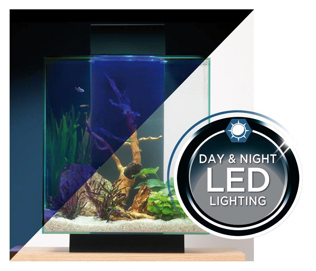 Fluval edge 12 gallon aquarium with 42 led light amazon in pet supplies