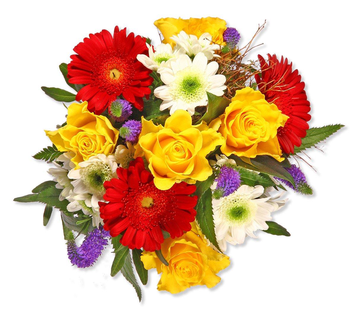 71gkvxcwtql Sl1200 Jpg 1200 1049 Beautiful Flowers