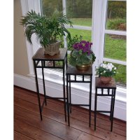 Indoor Plant Stands - INDOOR PLANT TIPS .COM
