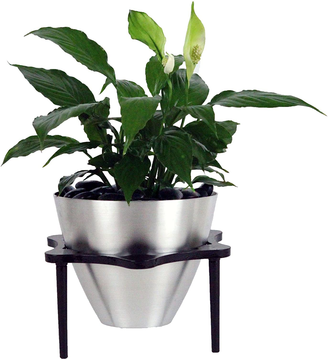 Amazon Garden Pots And Planters Indoor Flower Pots With Flowers