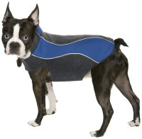 Best Dog Jackets: 5 Stylish & Practical (Second) Coats ...