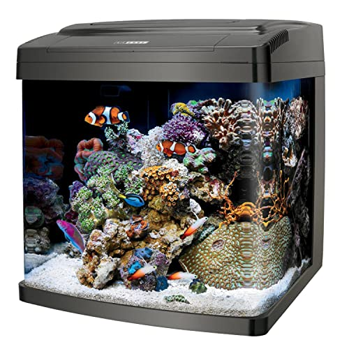 Coralife BioCube 29 Gallon Aquarium Review
