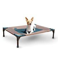 Best Raised Dog Bed: 5 Orthopedic Elevated Dog Beds (2017)