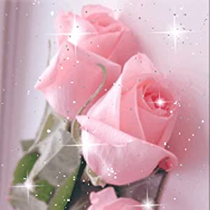 Amazon.com: Beautiful Roses Live Wallpaper Flowers: Appstore for Android