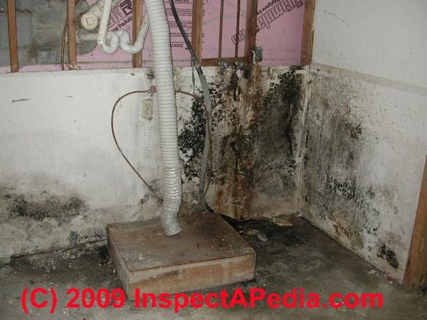 Black Mold In Mouth - Doctor Insights On Healthtap