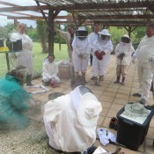 Honeychild - Beekeeping Theory in Rheenedal 1b
