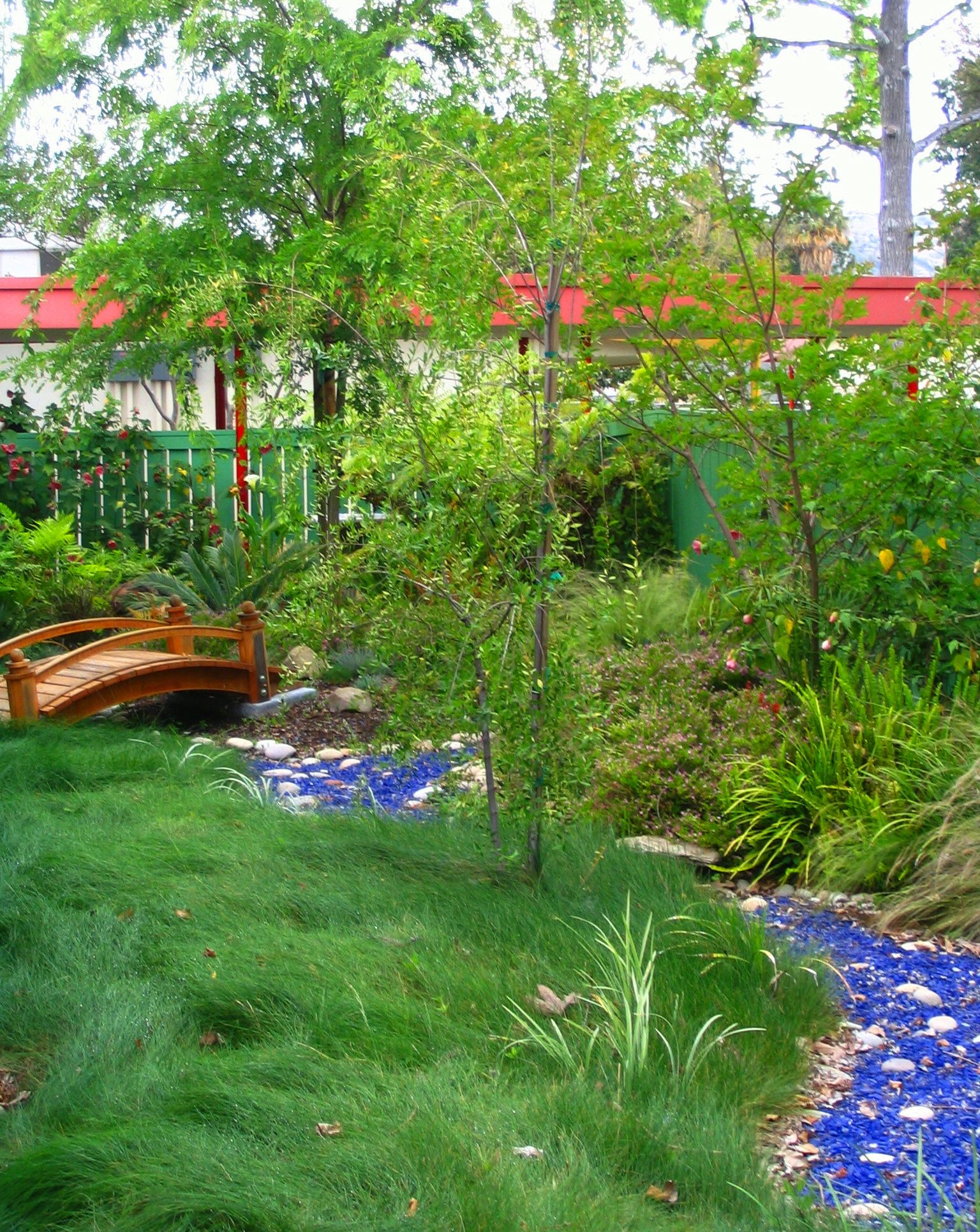 No mow red fescue and glass river | Eden Makers Blog by Shirley Bovshow