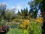 Shirley Bovshow's Mediterranean Garden