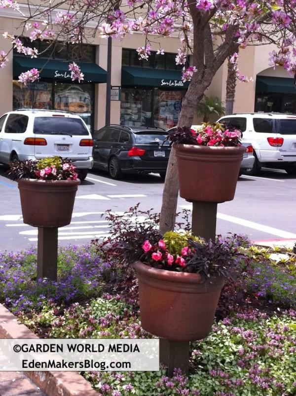 Garden Pots Container Gardens on Pedestals in Shopping Center
