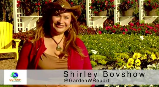 Shirley_Bovshow_How_Plants_Are_Bred_to_Become_Proven_Winners_plants_video_on_Garden_World_Report