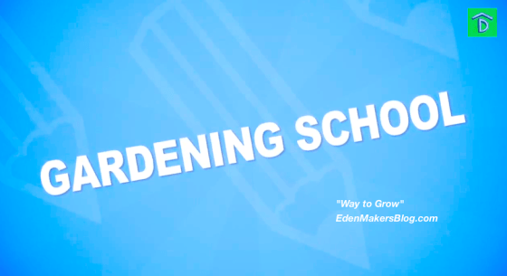 Gardening-School-Way-to-Grow-Show