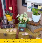 Legacy-Plant-Collection-Designed-by-Shirley-Bovshow-for-Home-and-Family-Show-Hallmark