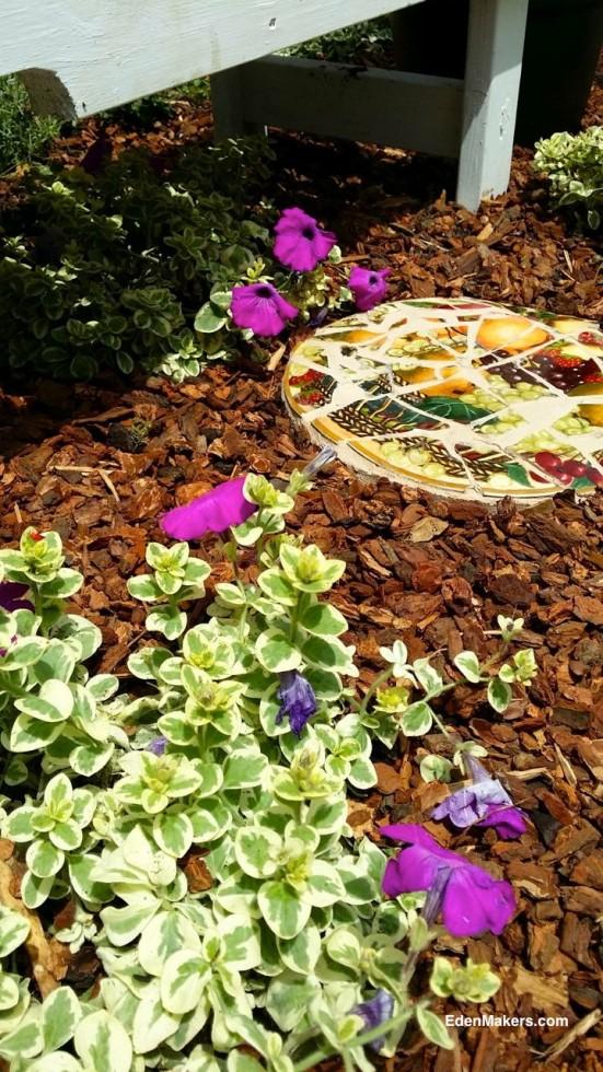 pink-petunia-variegated-foliage-with-broken-ceramic-plate-mosaic-stepping-stone-shirley-bovshow-edenmaker-designer