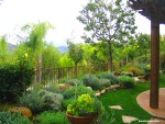Raised-mediterranean-style-garden-low-water-plants-shirley-bovshow-edenmaker-blog