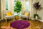 Big-Bold-indoor-houseplants-ficus-lyrata-cordeline-pink-edenmakers-blog