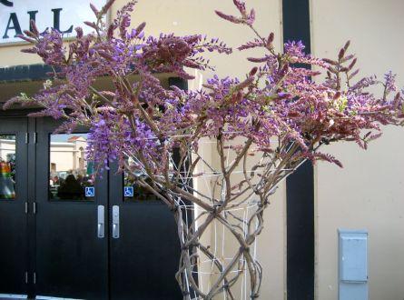 Wisteria tree image from EdenMakersblog.com