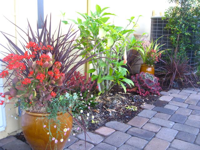 container garden ideas inspiration container garden ideas