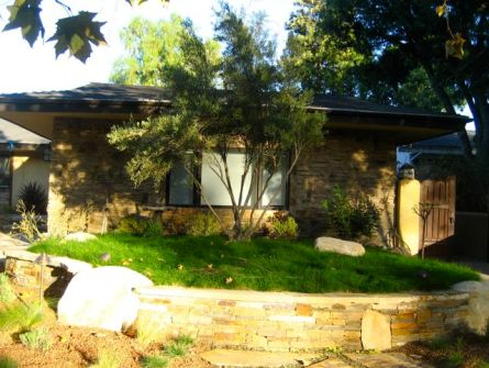 shirley-bovshow-lawn-drought tolerant UC Verde in Los Angeles, tall fescue