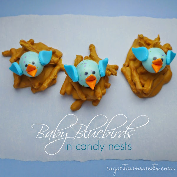 baby bluebirds in candy nests
