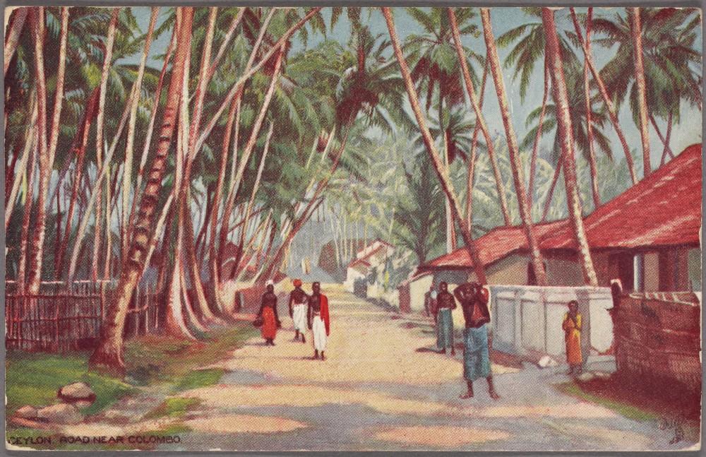Ceylon, Road near Colombo, 1908