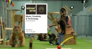 sonar 2016 EDMred